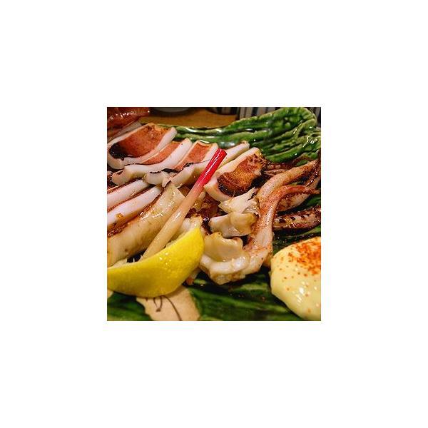 イカいか一夜干し(約200g×2枚)冷凍食品食品業務用家庭用国産