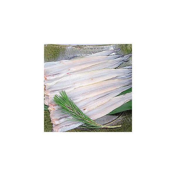 あなご 穴子 フィレ(約50〜60g×10枚)アナゴ 冷凍食品 食品 業務用 家庭用