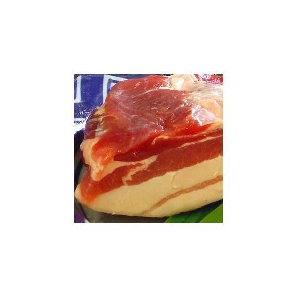 豚バラ 国産豚バラブロック(500g) 冷凍食品 業務用 家庭用 国産