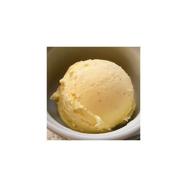 アイスクリーム 業務用 バルクアイス バニラアイスクリーム 2L 森永 国産 2リットル