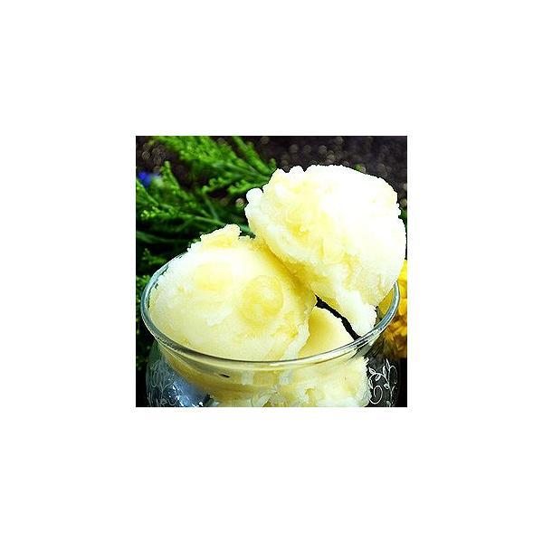 シャーベット 業務用 バルクアイス りんごシャーベット 2L 森永 国産 2リットル