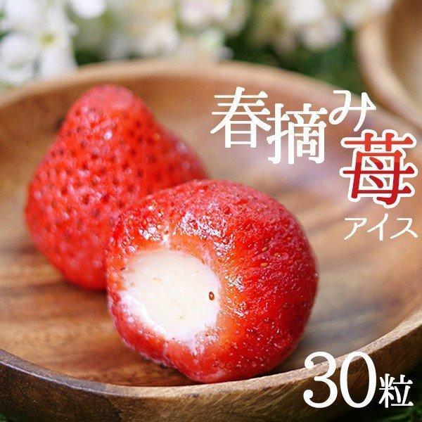 母の日プレゼントギフトスイーツカーネーション付2021おしゃれかわいい個包装アイスイチゴアイスお祝い春摘み苺アイス(30粒)食べ