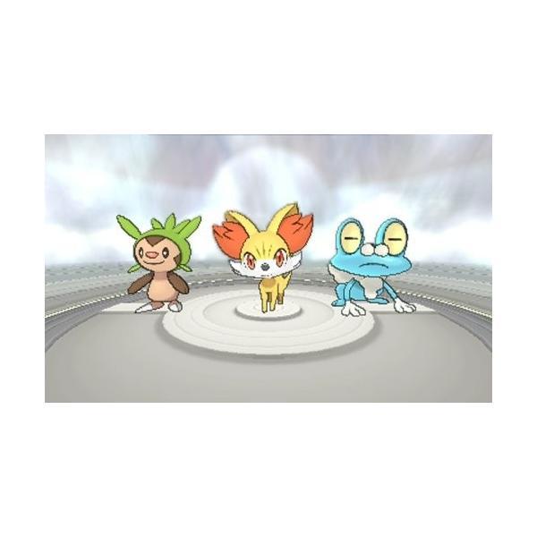ポケットモンスター X - 3DS felicevoice-store 02