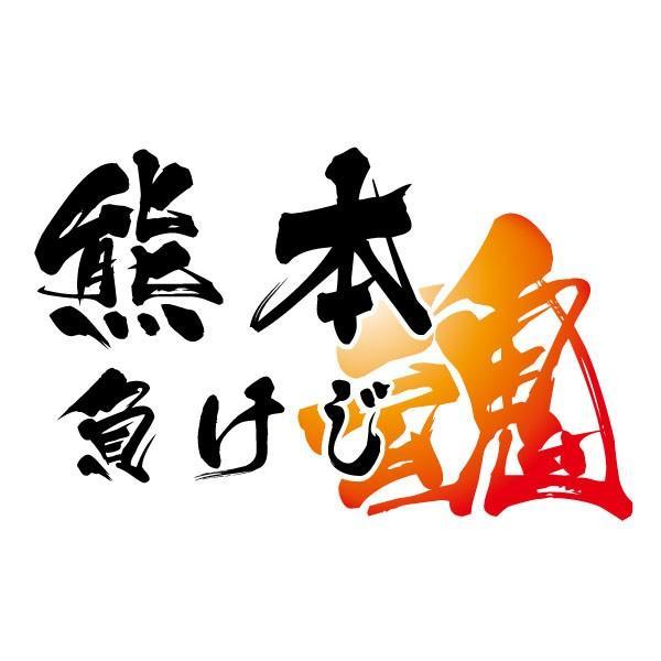 熊本 負けじ Tシャツ 熊本地震 震災 チャリティ Tシャツ 白|fellows7|03