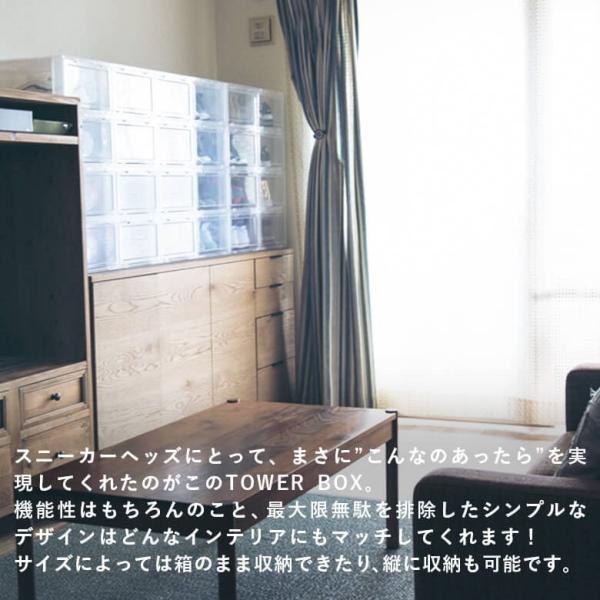 【ポイント10倍】タワーボックス TOWER BOX シューズボックス NORMAL TYPE TB0001 下駄箱 収納|figure-corners|02
