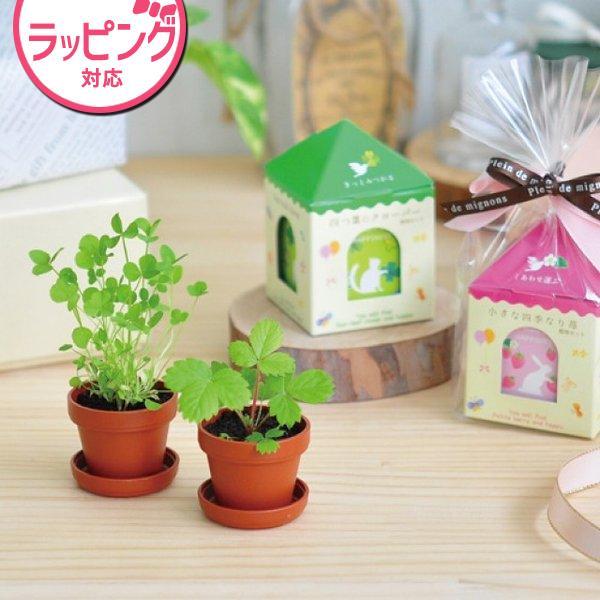 聖新陶芸 Petit Green プチグリーン GD654