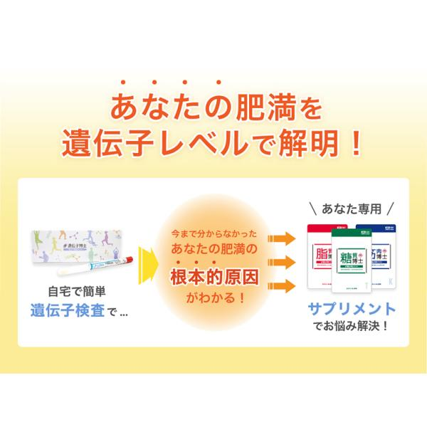 遺伝子検査キット「遺伝子博士」ダイエット 肥満遺伝子検査キット DNA 送料無料|fineseed-yy|04