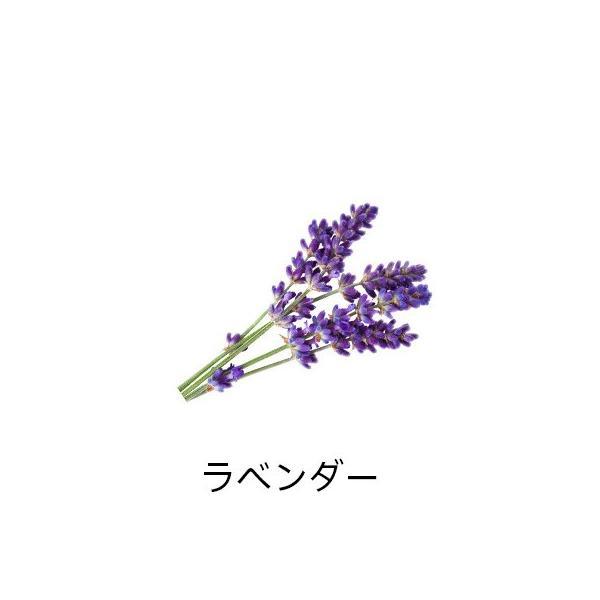 精油スターターbox<ラベンダー&ローズマリー>|firstflight|05