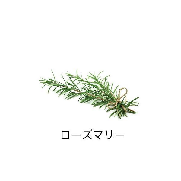 精油スターターbox<ラベンダー&ローズマリー>|firstflight|06