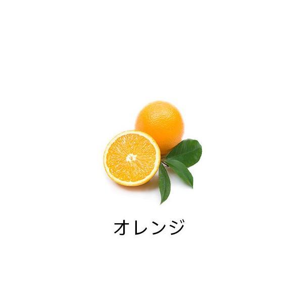 精油スターターbox<オレンジ&ティートリー> firstflight 05