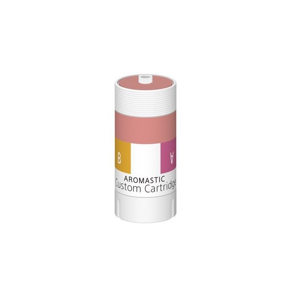 AROMASTIC Gift Box B001(クリスマスギフト仕様)|firstflight|04