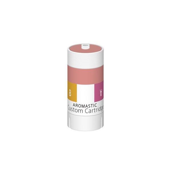 AROMASTIC Gift Box W001(クリスマスギフト仕様)|firstflight|04