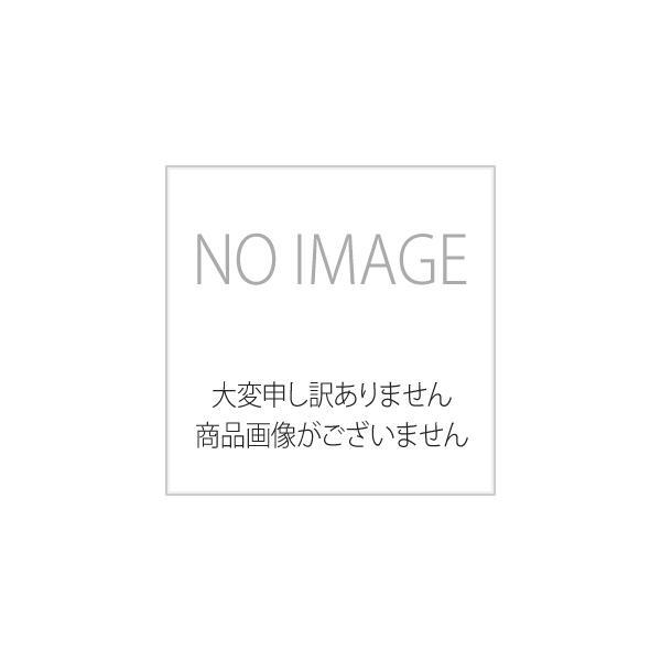 モリタ宮田工業 粉末100型1本用消火器格納箱 ステンレス BF100S [個人宅配送不可]