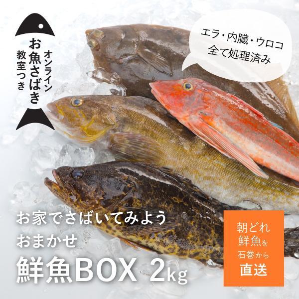 鮮魚BOXお手頃2キロセット