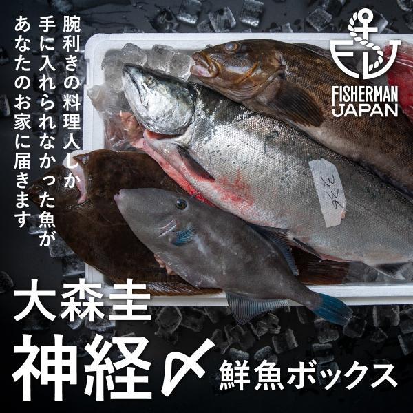 大森圭 神経〆鮮魚ボックス 3kg
