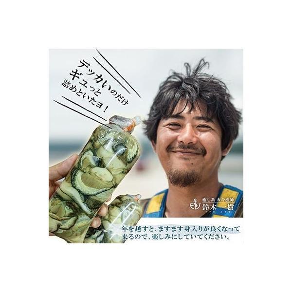 【生食用】牡蠣まさむね500g デッカイのだけギュッと詰めといたよ!/さっぱりした味わい!/石巻牧浜 漁師直送|fishermanjapan|05