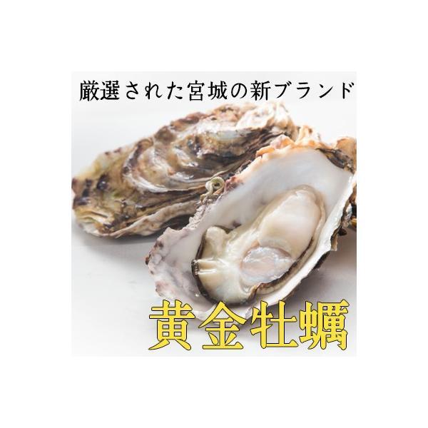 【生食用殻付き】黄金牡蠣10個/女川/独自殺菌で安心安全! fishermanjapan