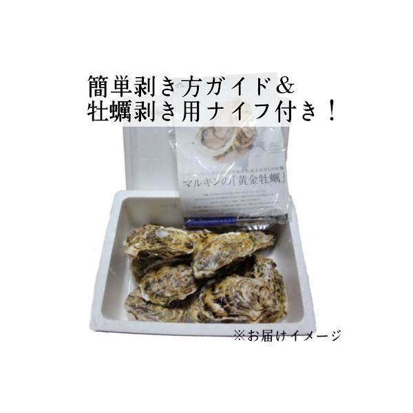 【生食用殻付き】黄金牡蠣10個/女川/独自殺菌で安心安全! fishermanjapan 02