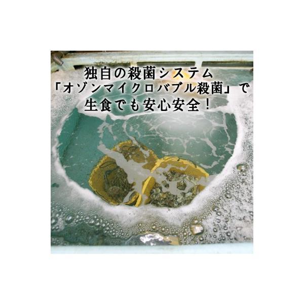 【生食用殻付き】黄金牡蠣10個/女川/独自殺菌で安心安全! fishermanjapan 03