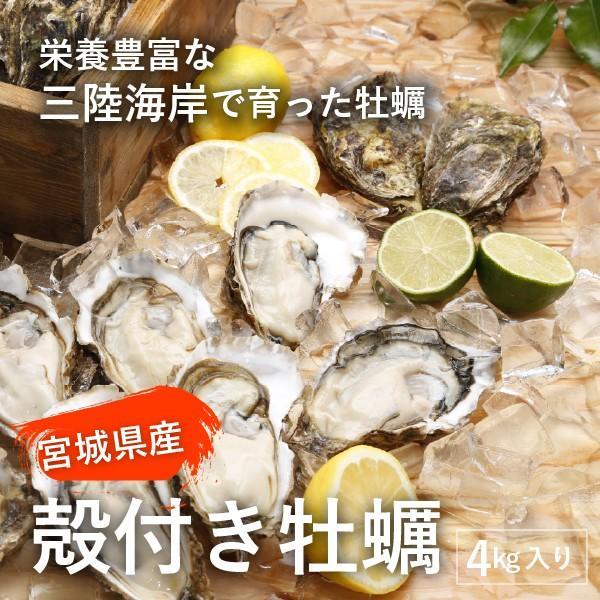 生で美味しい/宮城県産殻付き牡蠣/4キロ(約30個/冷凍/コロナ支援商品|fishermanjapan