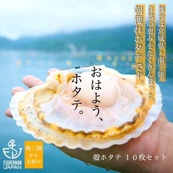 金毘羅丸/南三陸産/朝獲れ殻付きホタテ10枚セット/海の香りを直送