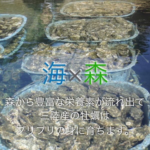 水産庁長官賞受賞/三陸生牡蠣フライ/6粒×4P fishermanjapan 02