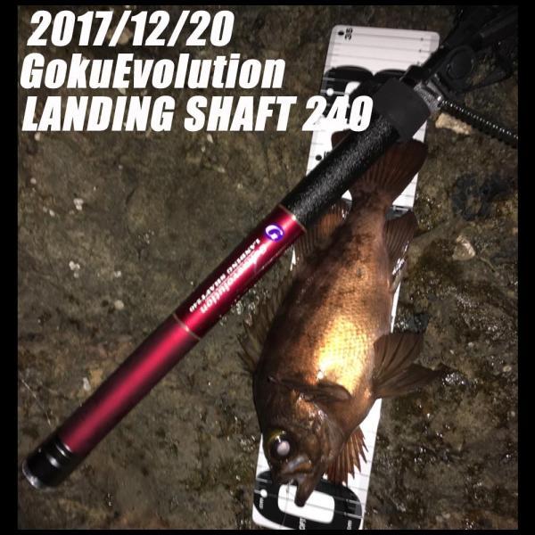 小継玉の柄 Gokuevolution Landing Shaft 240(goku-087344)