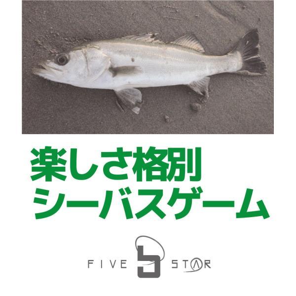 ルアーもついたフルセット!チャレンジシーバスセット/シーバス/ルアー/釣り/FIVESTAR/ファイブスター|fivestarfishing|08