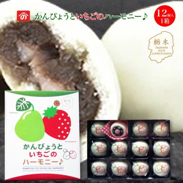 かんぴょうといちごのハーモニー♪12個入り [栃木県産品 上三川町]