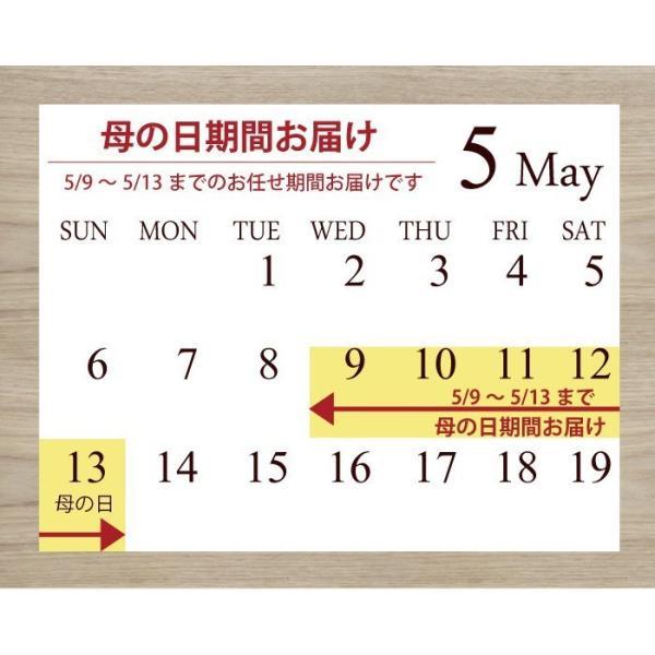 2018母の日ギフト テーブル胡蝶蘭 ピンク系おまかせ 産地直送 鉢花 椎名洋ラン園 フラワーキッチン FKHH|fkjiyugaoka|06