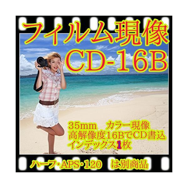 カラーフィルム現像 + CD書込=高解像度16Bでデータ保存+Wインデックス 「写ルンですOK」 フジカラー純正薬品使用