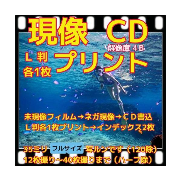 フィルム現像 +L判各1枚プリント+CD書込(画像が荒い4Bでデータ保存) +Wインデックス 「写ルンですOK」