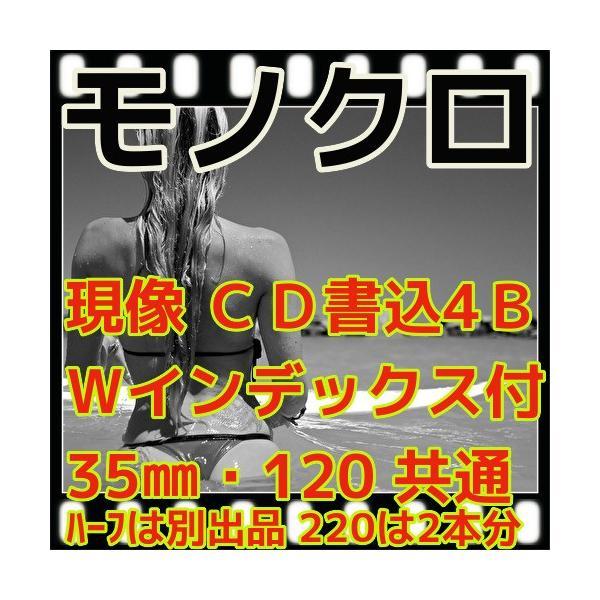 モノクロフィルム現像 + CD書込(画像の荒い4B)+Wインデックス