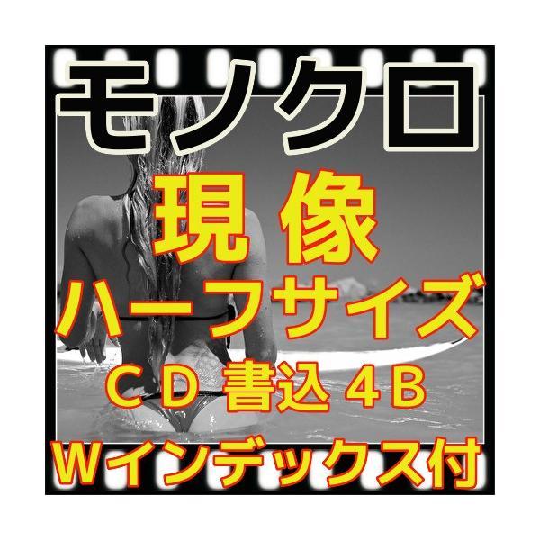 ハーフ・モノクロフィルム現像+CD書込(画像の荒い4B)