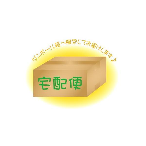 宅配便オプション (箱梱包) ◆宅|flashmemory