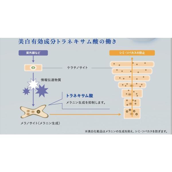 資生堂 ナビジョン NAVISION TAローション (W) 150ml 【薬用美白化粧水】|fleur-yshop|02