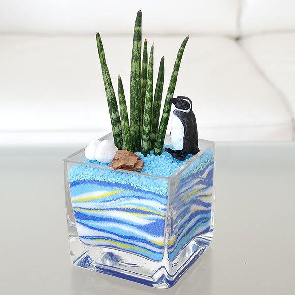 ミニ観葉植物 サンスベリア カラーサンド植え ペンギンフィギュア付き