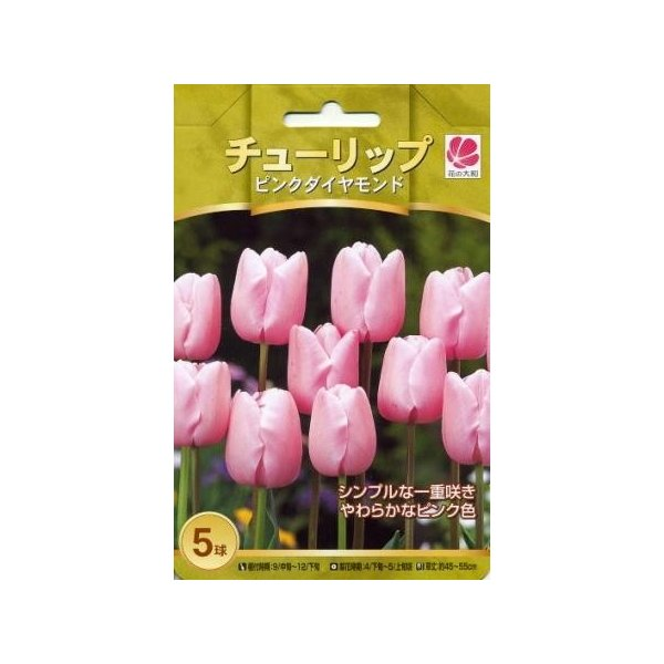 花の大和 球根 人気のチューリップ ピンクダイヤモンド5球セット