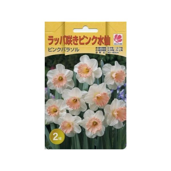 50%オフ 花の大和 球根 プレミアム水仙 ラッパ咲き ピンクパラソル2球セット