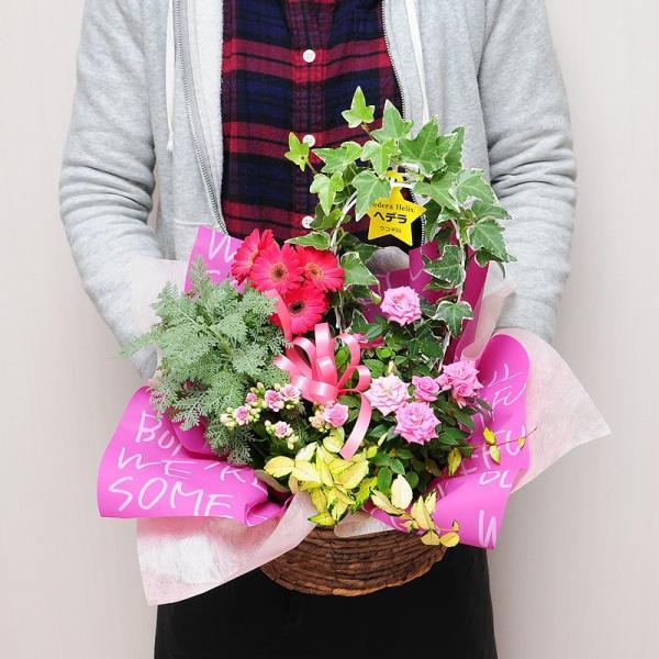 誕生日の花 鉢植え 花 ギフト 可愛い寄せ鉢ミックス Mサイズ お祝い 花 おしゃれ寄せ植えギフト 翌日配達 flower 03