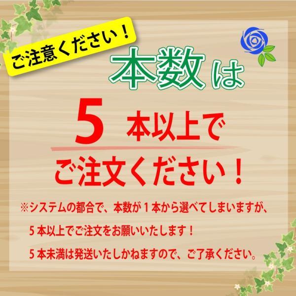 バラ 花束 青 薔薇 青いバラ 本数指定 誕生日 年の数 花ギフト ブルーローズ プレゼント 5本以上からの注文受付です|flower|02