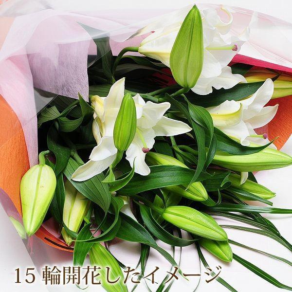 花束 ギフト 大輪カサブランカの花束 プレゼント ゆり ユリ 百合 お祝い花束 翌日配達 あすつく|flower|07