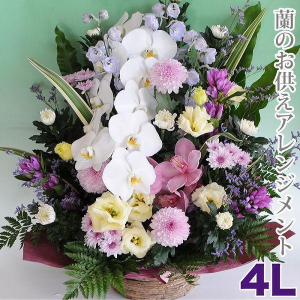 お彼岸 花 お供え 蘭のお供え仏花  アレンジメント 4Lサイズ 命日 一周忌法事法要宅配|flower