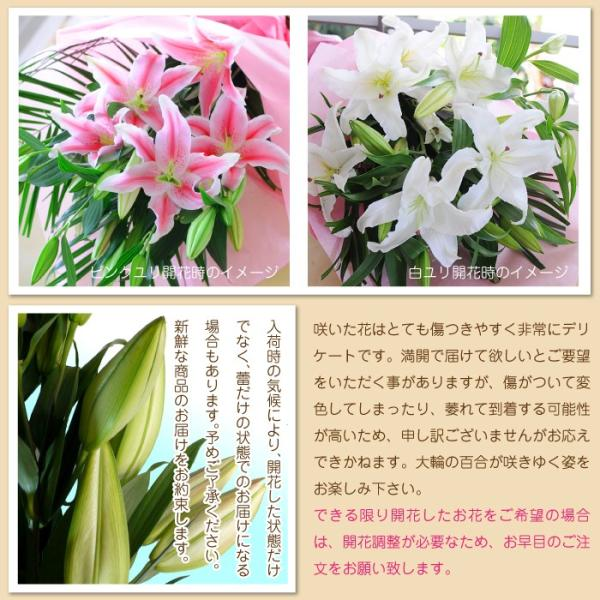 花束ギフト フラワーギフト 白ユリの花束 100輪 誕生日 ゆり 百合 翌日配達|flower|04
