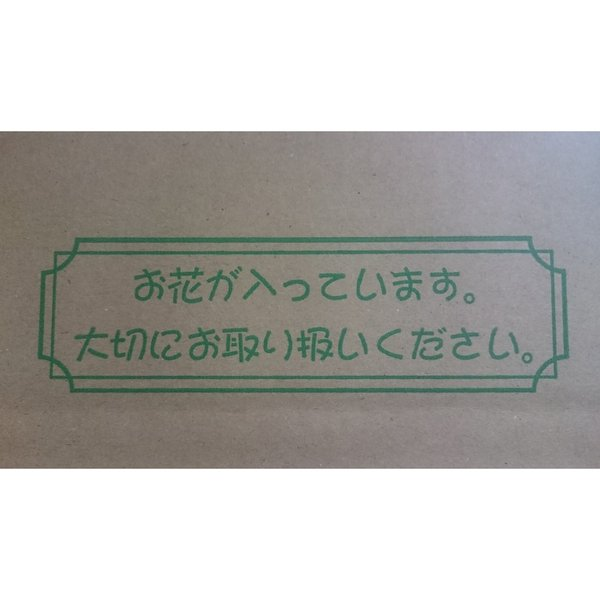 Flower&Green フラワー宅配ボックス 上開きタイプ SKD-100 10枚|flowernana|06