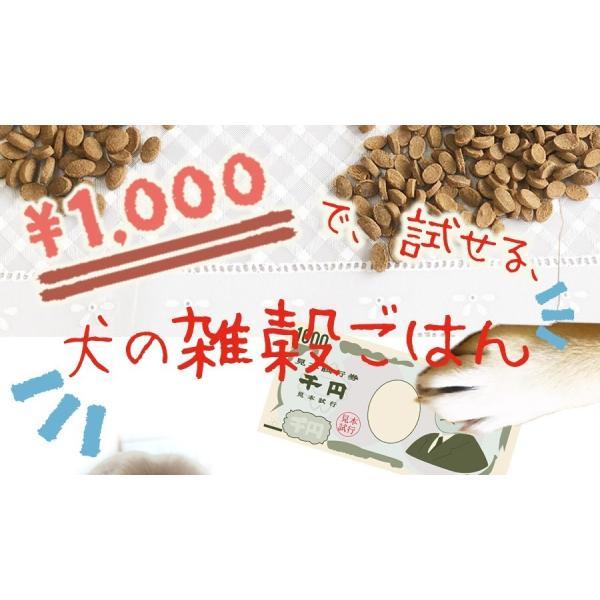 無添加国産ドッグフード 犬の雑穀ごはん&機能性雑穀ごはん お試しセット ペットフード30gX2種類5袋150g アニマル・ワン|fluffi|04