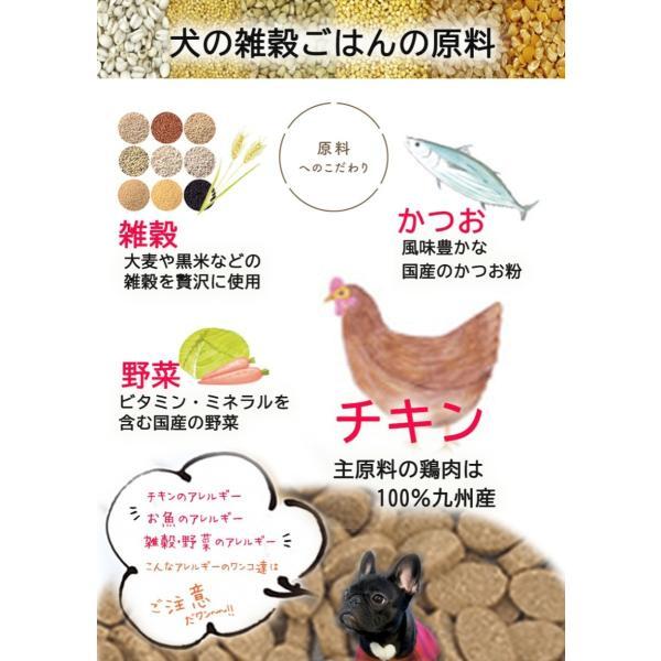 無添加国産ドッグフード 犬の雑穀ごはん&機能性雑穀ごはん お試しセット ペットフード30gX2種類5袋150g アニマル・ワン|fluffi|10
