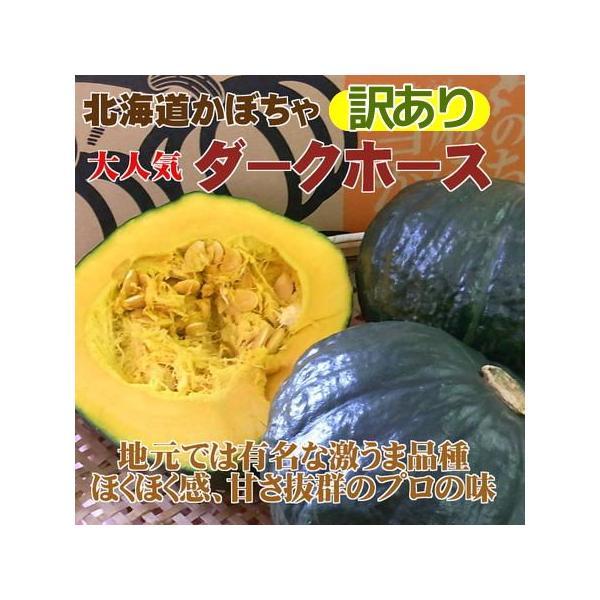 訳あり北海道産かぼちゃ「ダークホース」(約10kg)