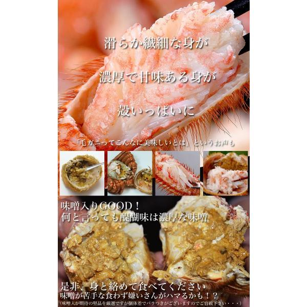 毛ガニ かに カニ 毛がに ジャンボ 約800〜1kg 1尾 冷凍 夏カニ|foodsland|11