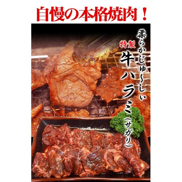 焼肉 BBQ バーベキュー はらみ 柔らか牛ハラミ(サガリ)800gタレ込み(1個注文で+250gおまけ付き)(2個注文で+2個おまけ付き)送料無料 冷凍|foodsland|03